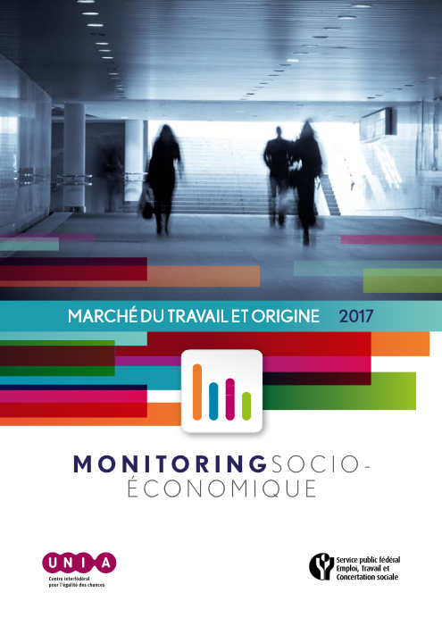 2017 Socioeconomic Monitoring